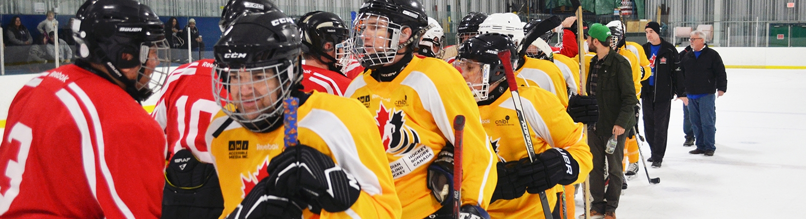 Listen To The 2019 Canadian Blind Hockey Tournament Accessible